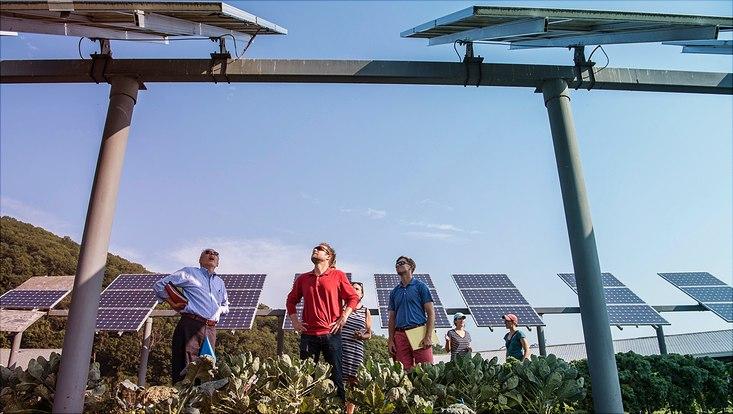 Photovoltaic in desert