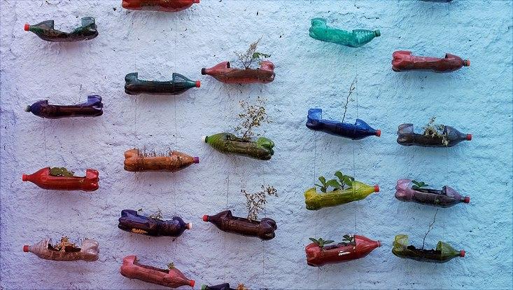 An einer Wand hängen aufgeschnittene Plastikflaschen in denen Pflanzen wachsen.